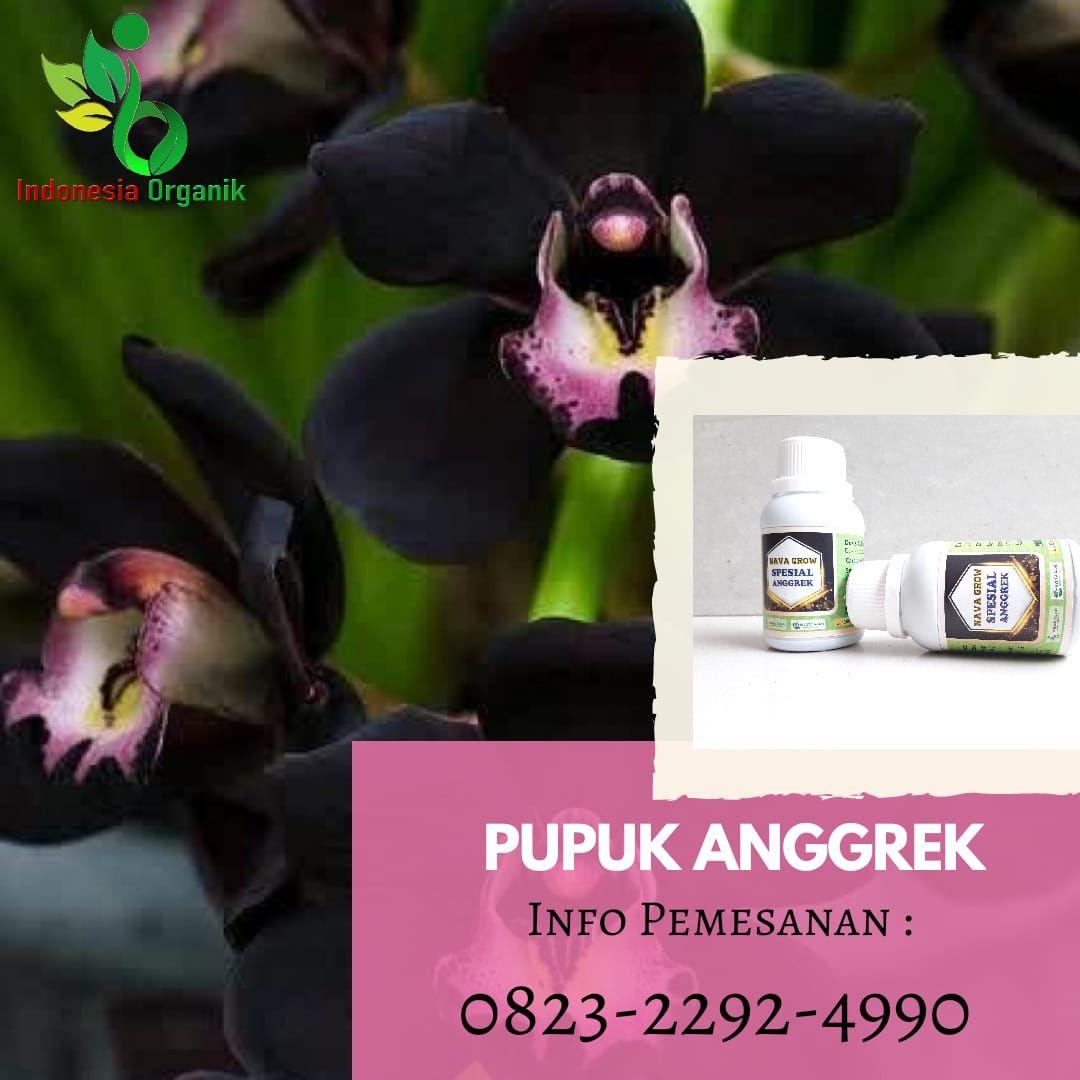 Limited 0823 2292 4990 J Pupuk Organik Anggrek Dan