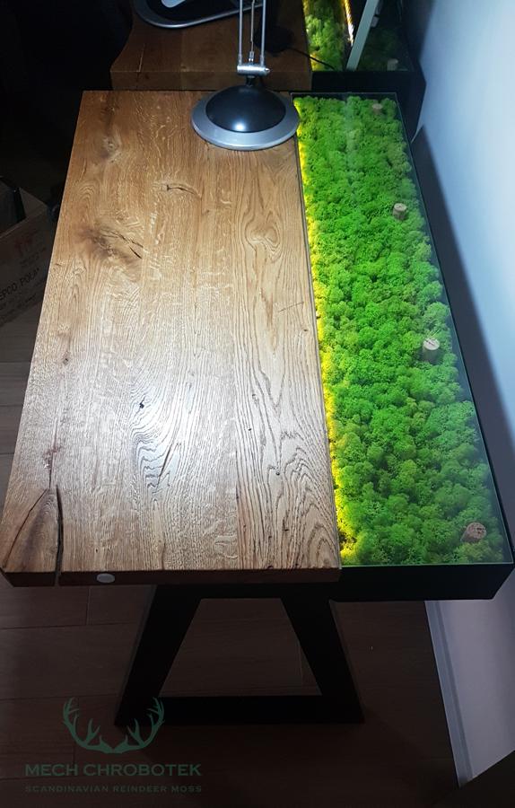 Mech Chrobotek Jasny Zielony 500g 7931773132 Allegro Pl Moss Decor Decor Home Decor