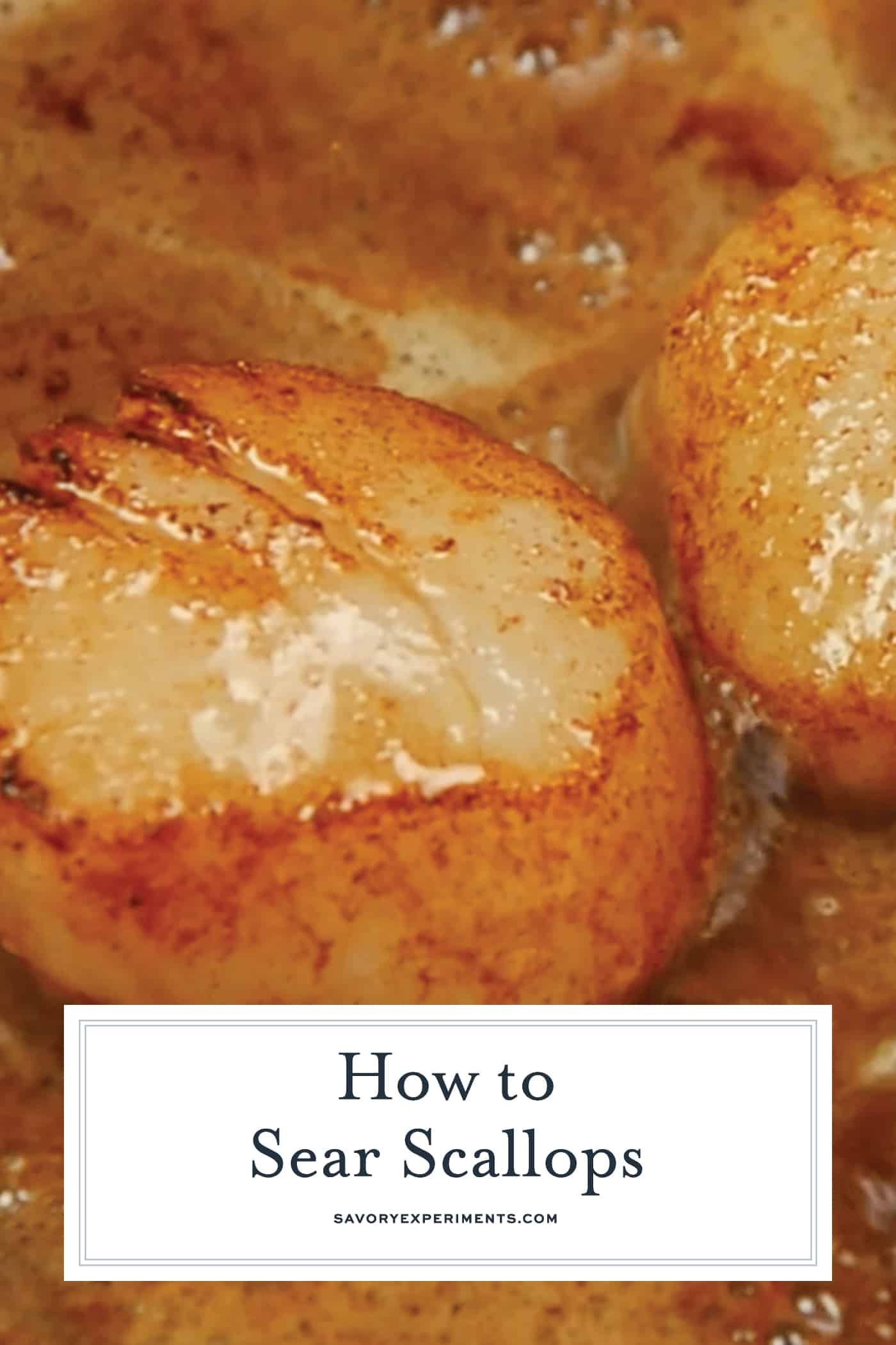 Pan Seared Scallops At Home Are Easy To Make Learn How To Prevent