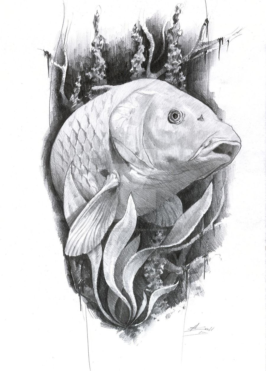 Carp tattoo by on deviantart for Carp pond design
