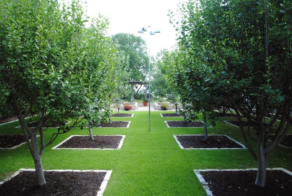 Orchard Fruit Trees Garden Design Orchard Garden Fruit Tree Garden