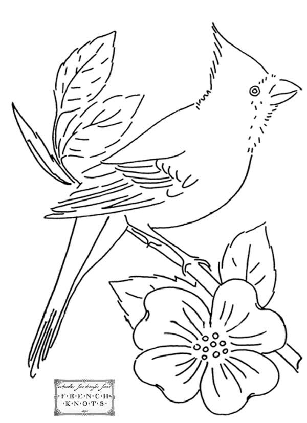 Bird Embroidery Patterns Embroidery Patterns Pinterest
