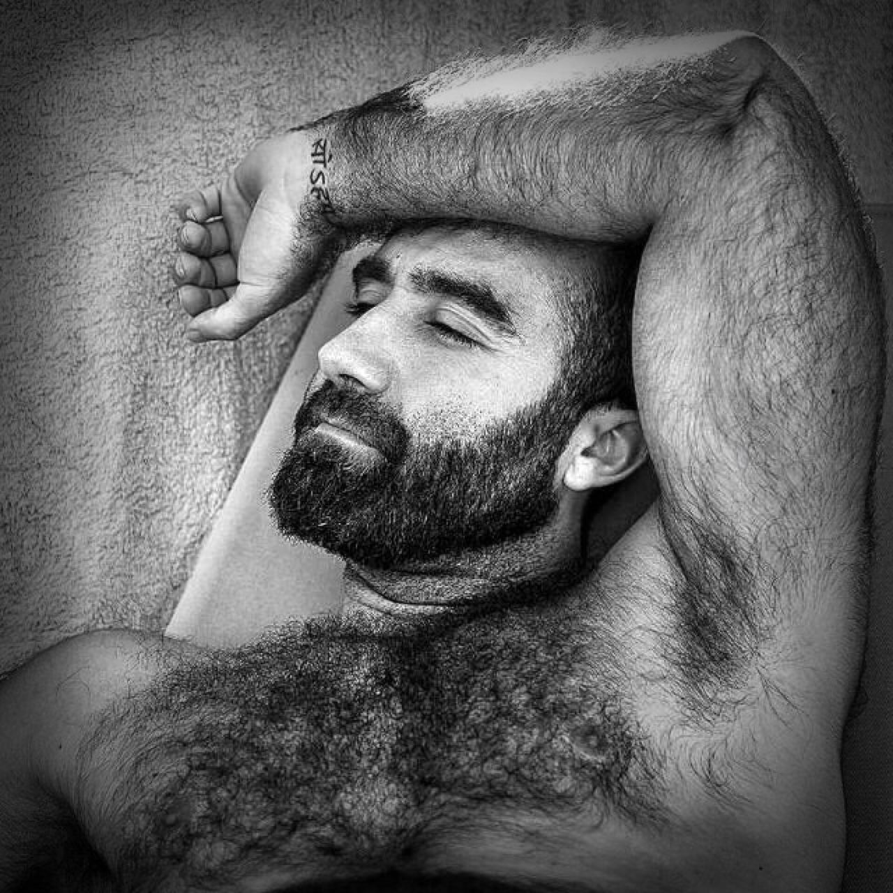 Hairy Beefy Tumblr