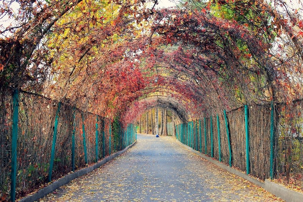 Autumn In Europe Yerevan Armenia Armenia Travel Armenia