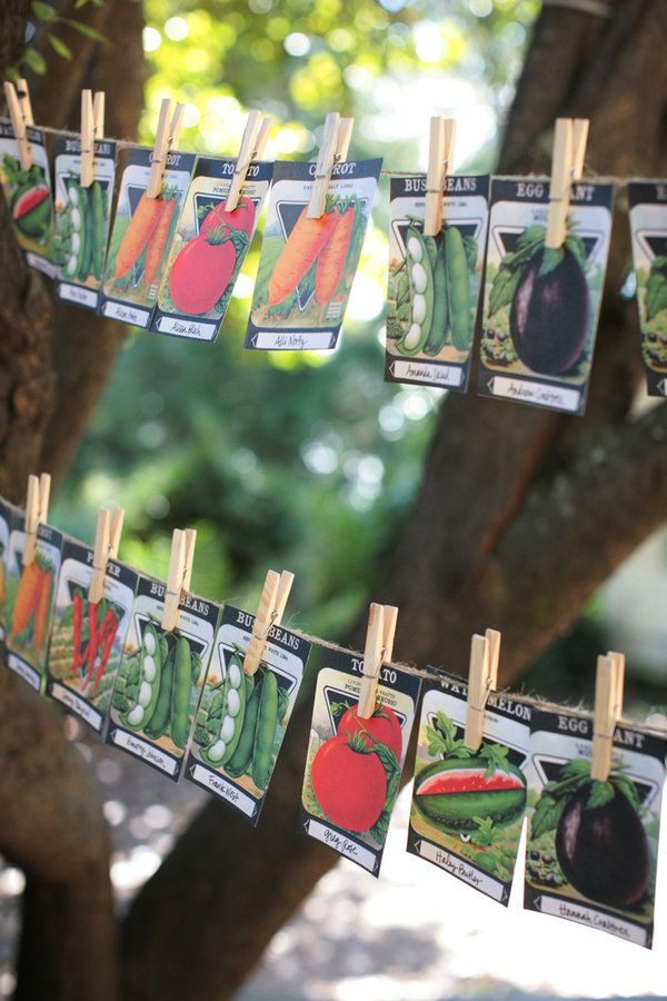 Seed packet escort cards.