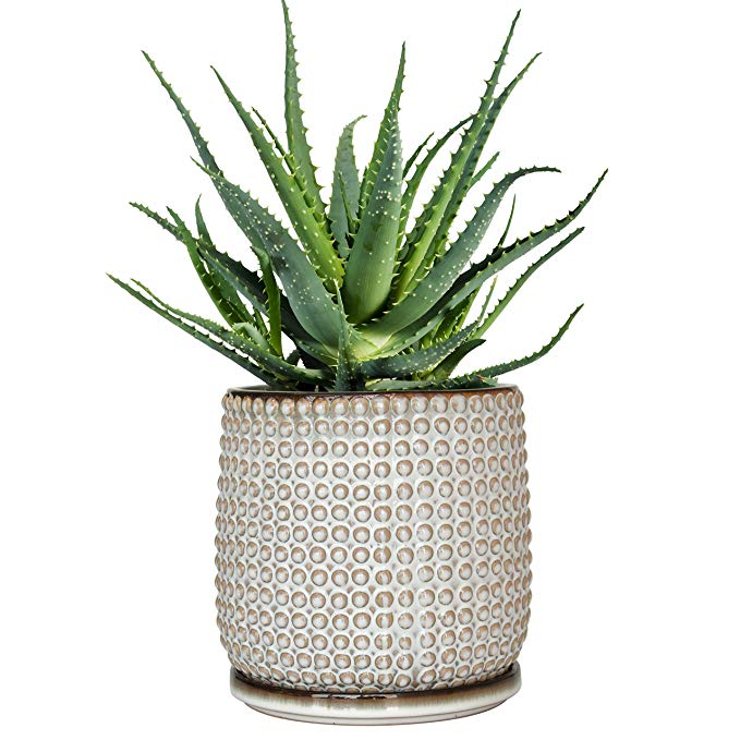 Amazon Com Beaded Stoneware Pot With Drainage Hole And Tray Smoke White Ceramic Plant Pot 5 Inch Round Ceramic Plant Pots Ceramic Flower Pots Stoneware Pot