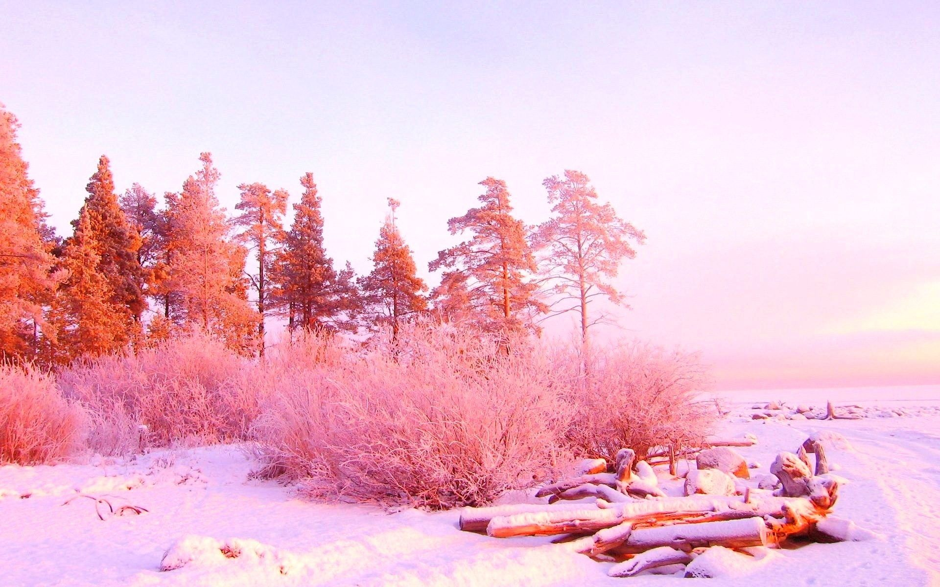 Super Pretty Pink Winterscape Winter Wallpaper Vintage Landscape Pink And Gold Wallpaper