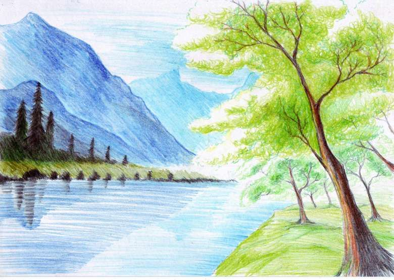 10 Coloured Sketch Of Nature Nature Drawing In 2020 Nature Drawing Nature Paintings Nature Sketch