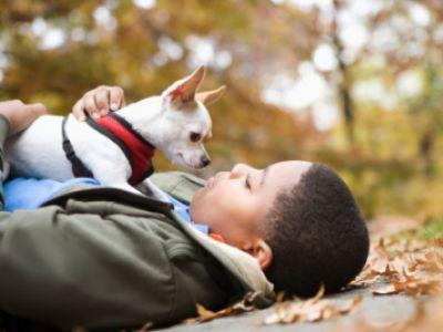 Can Kids EVER be alone with dogs?