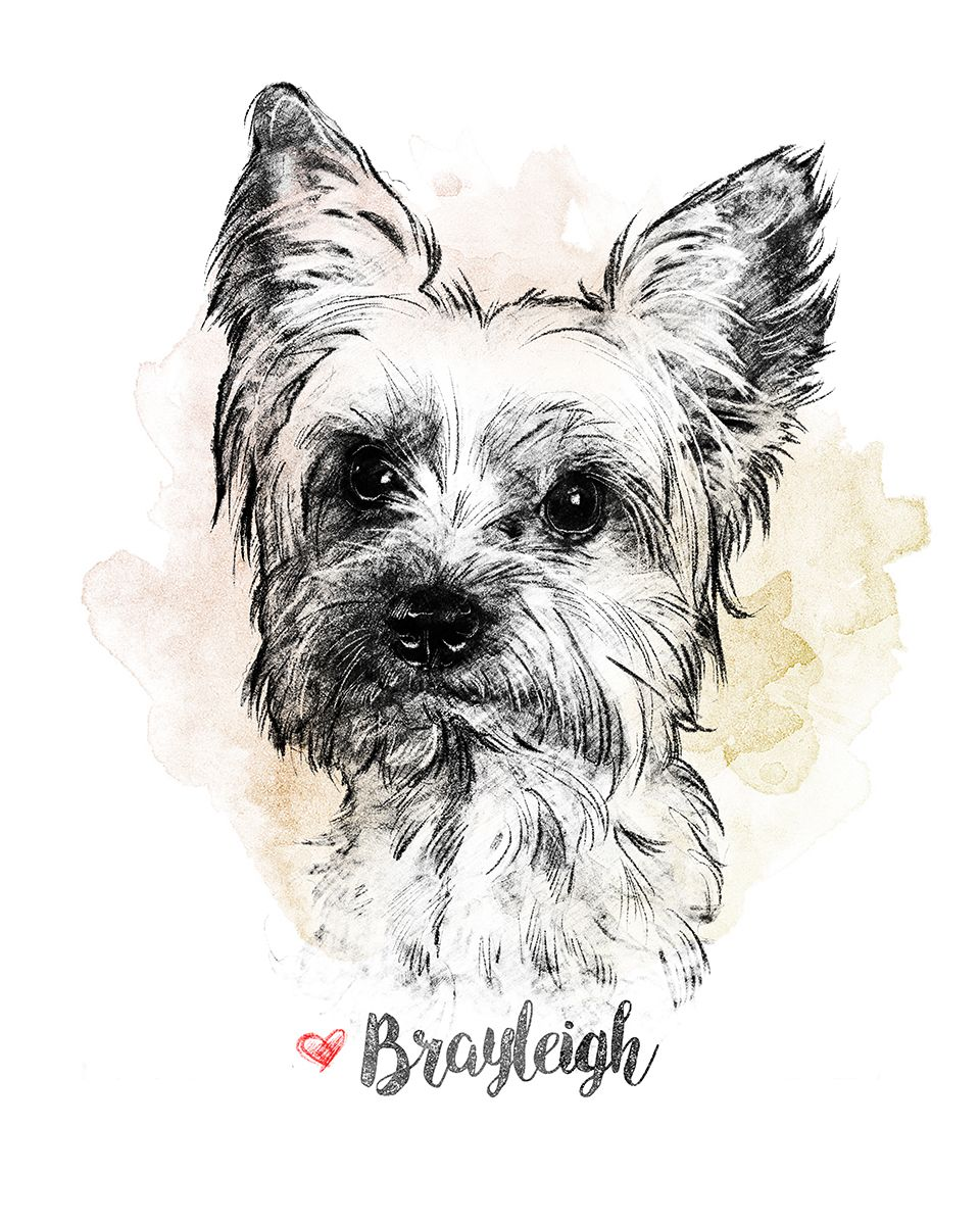 Custom Pet Portrait Pencil Dog Drawing Digital Animal Sketch Pet Memorial Portrait Dog Lover Gift Cat Owner Gift Doodle Dog Drawing Small Dog Tattoos Dog Memorial Tattoos