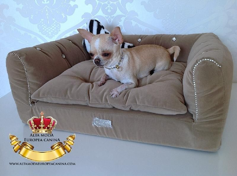 Camas para perros peque os un lujo camas y casas mascotas pinterest perros peque os - Casas para perros pequenos ...