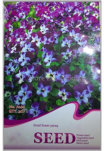 Solution Seeds Farm Rare Perennial Small Flower Pansy Seeds Original Package 30 Seeds Quality Potted Flower Seeds Orn Flower Seeds Small Flowers Flower Pots