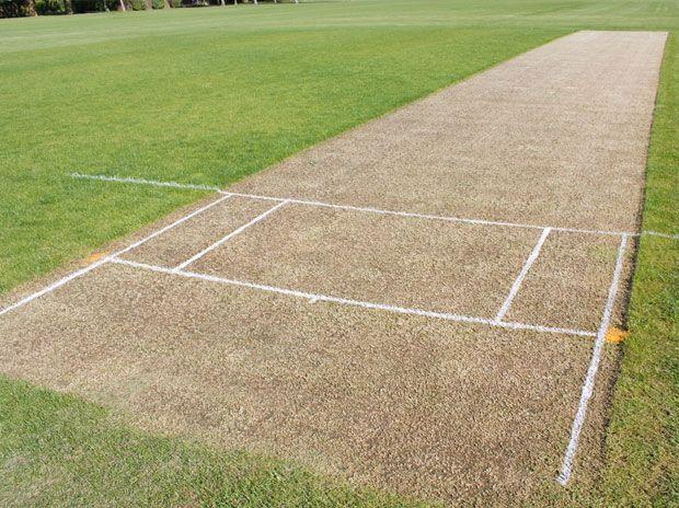 Cricket Pitch T20 Cricket Cricket League