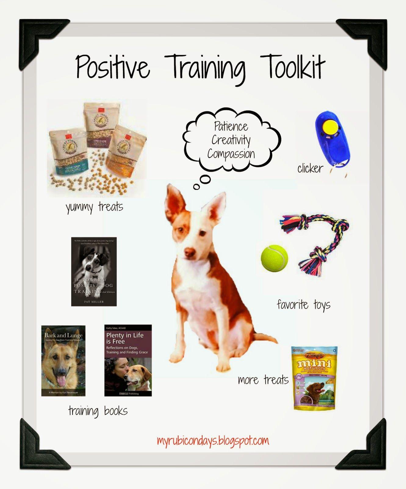 Positive Training Toolkit Hundar