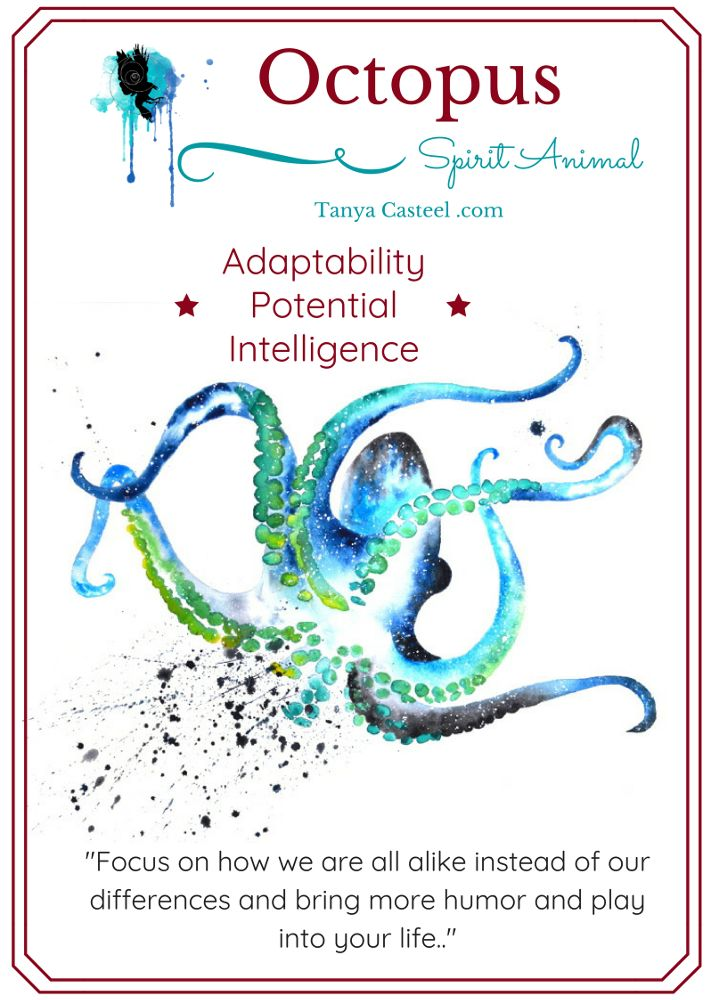 Octopus Spirit Animal Symbolism Meaning And Watercolor Paintings