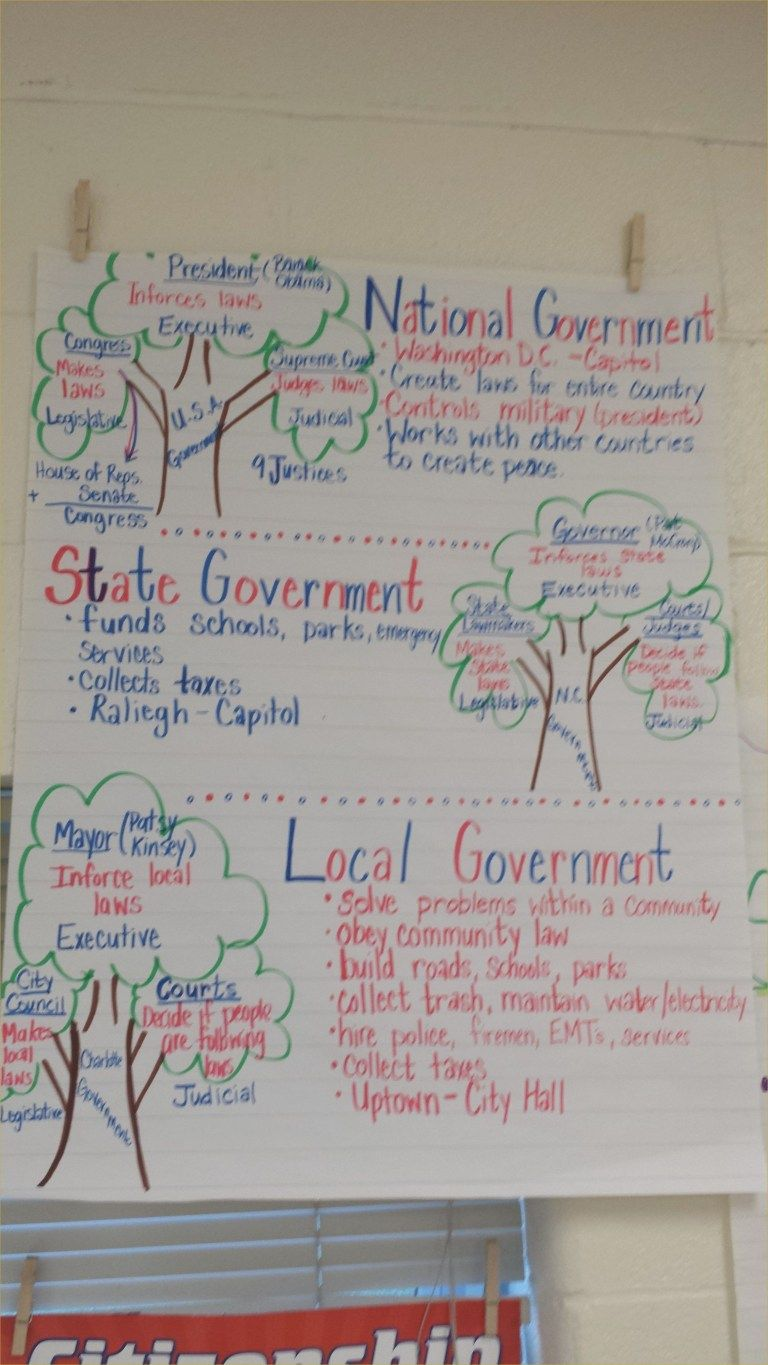 Three Branches Of Government Worksheet Unique My Chart Anchor Charts Also Rh Chrisonomic Third Grade Social Studies Government Lessons 3rd Grade Social Studies