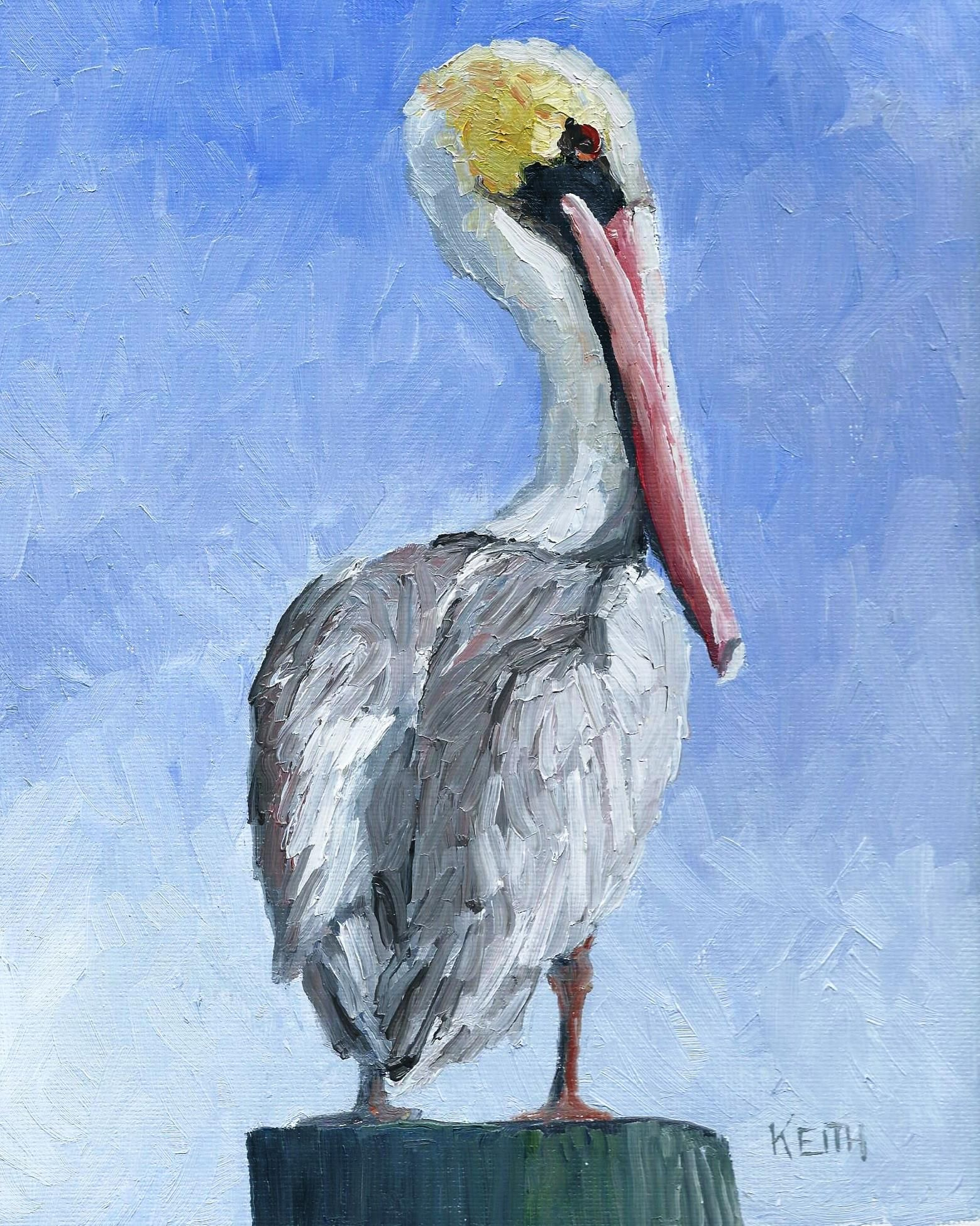 Mr Pelican is a new 8x10 oil painting using extra fine