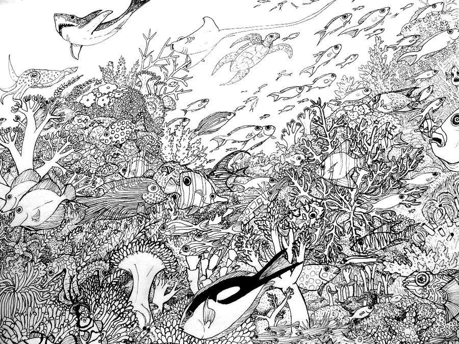 intricate coloring pages for adults | Coral Reef Coloring Page by ...