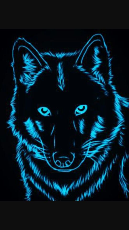 neon blue wolf great wallpapers wolf wallpaper wallpaper wolf