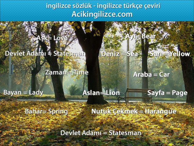 Ingilizce Turkce Ceviri Http Acikingilizce Com Tree Plants Tree Trunk