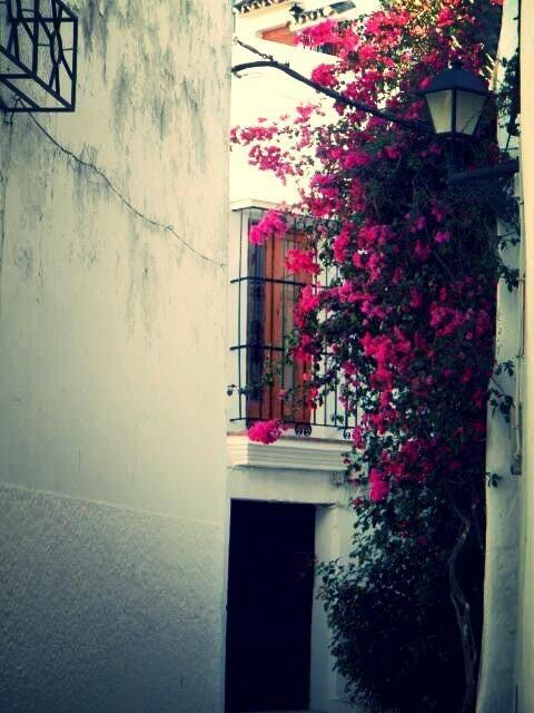 191. #veranoenAndaluciaES el encanto de las callejuelas de #Vejerdelafrontera #pueblosblancos #Cádiz. By @DreiDuval