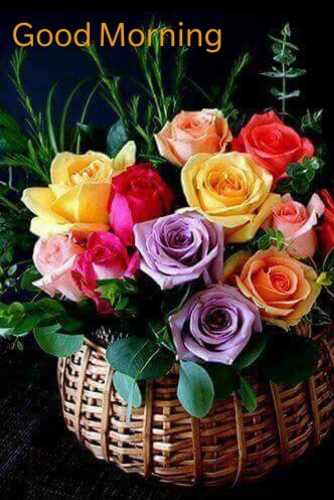 Good Morning With Colourful Roses In Wooden Basket V