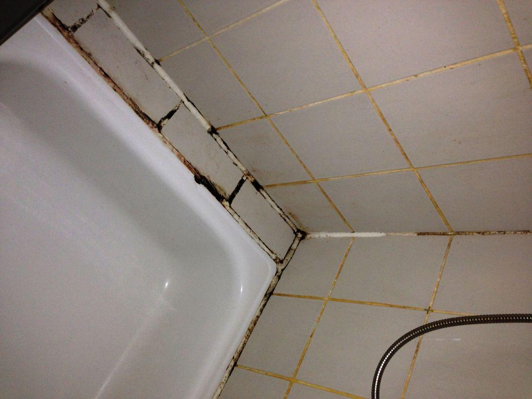 Diese Tipps Helfen Gegen Schwarze Flecken An Fliesen Und Fugen In Badezimmer Schimmel Ba Schimmel Entfernen Schimmel Im Bad Schimmel In Der Dusche Entfernen