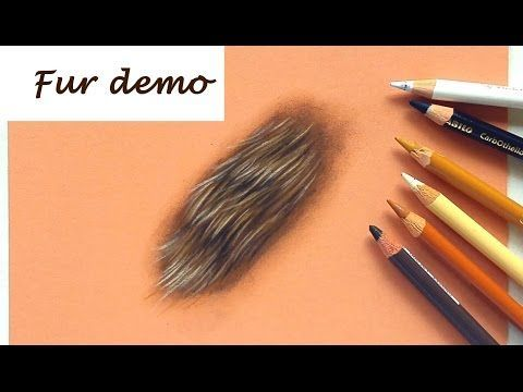 4 how to draw fur with pastel pencils drawing tutorial leontine