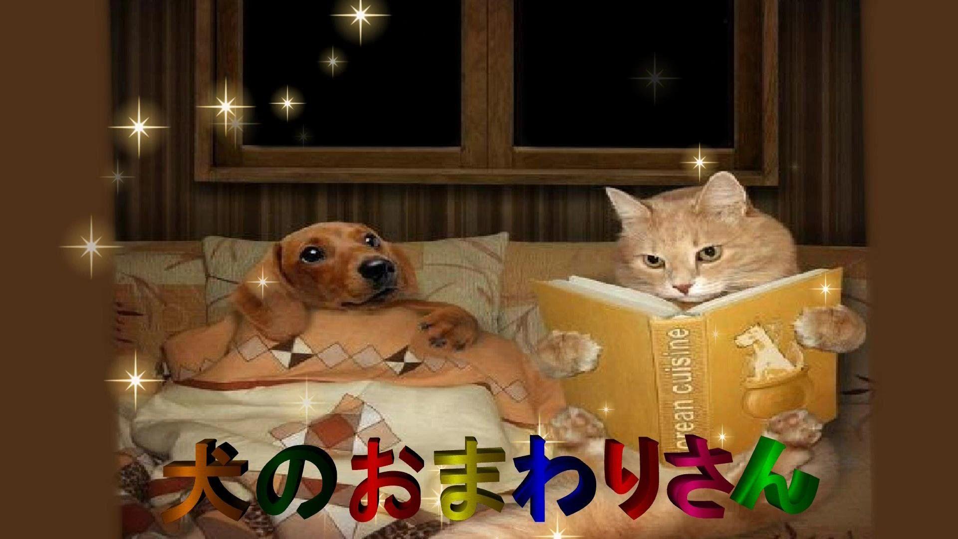 おまわりさん 歌詞 の 犬