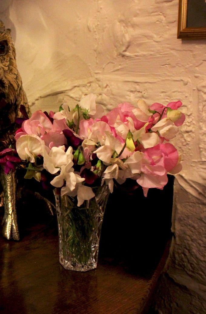 pink flowers  http://beautiful-andstrange.blogspot.com/