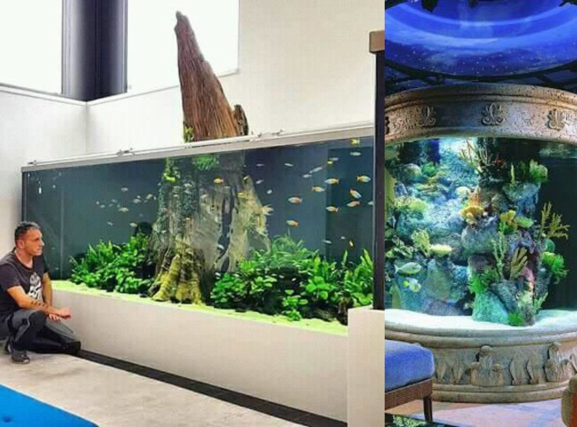 Value Added Huge Aquarium For Fish Lovers Fish Tank Stand