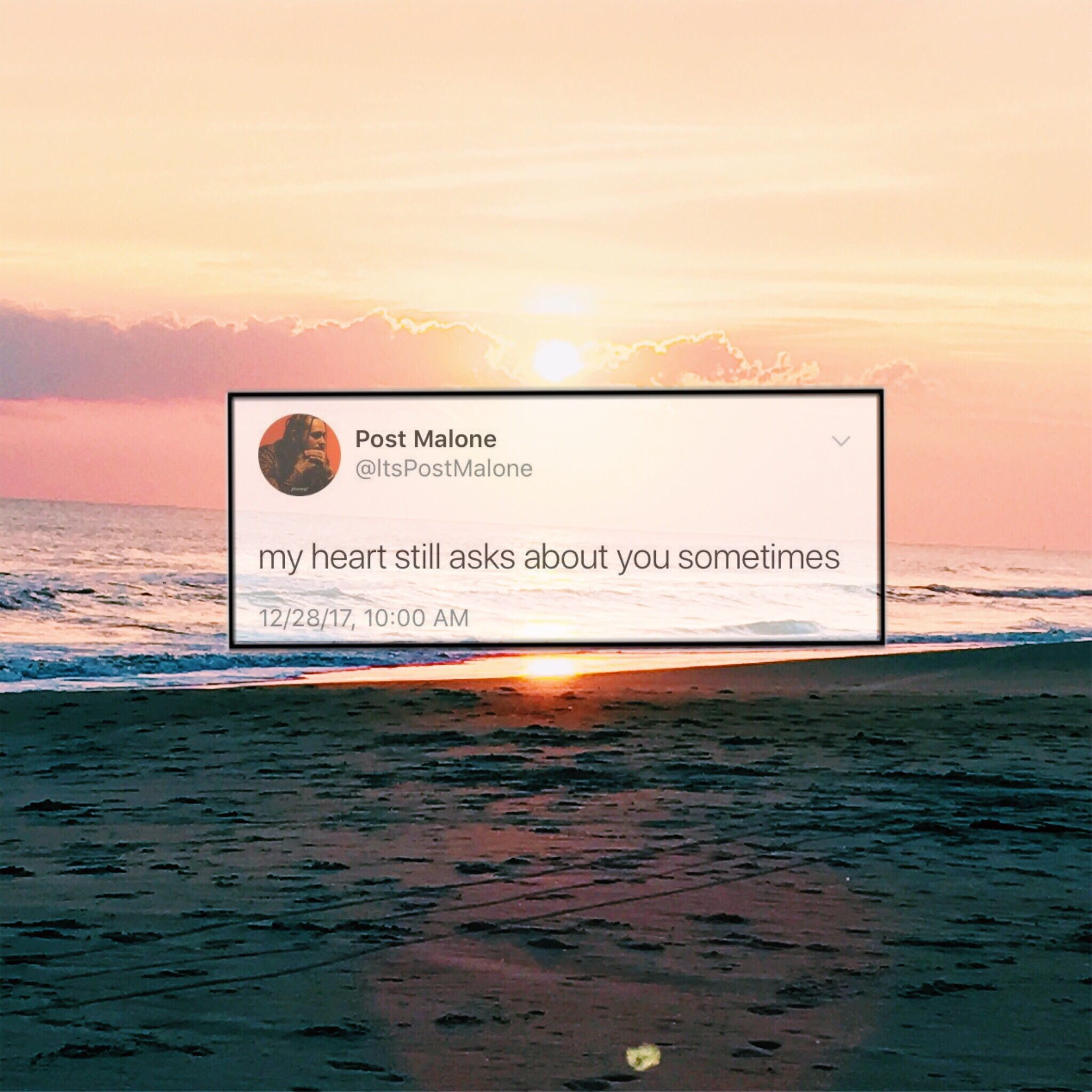 Post Malone Sad Quotes: A Post Malone Deep Tweet Edit
