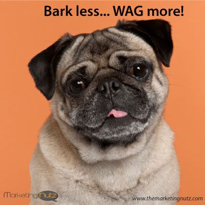 Bark Less Wag More Http Www Pammarketingnut Com Funny Dogs