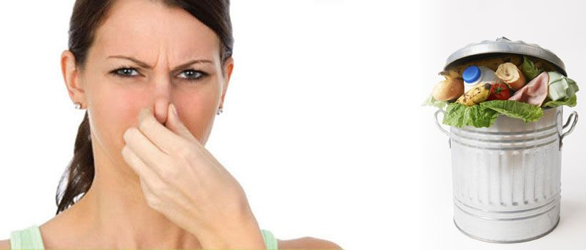 Eliminating the Odors That Linger in Apartments
