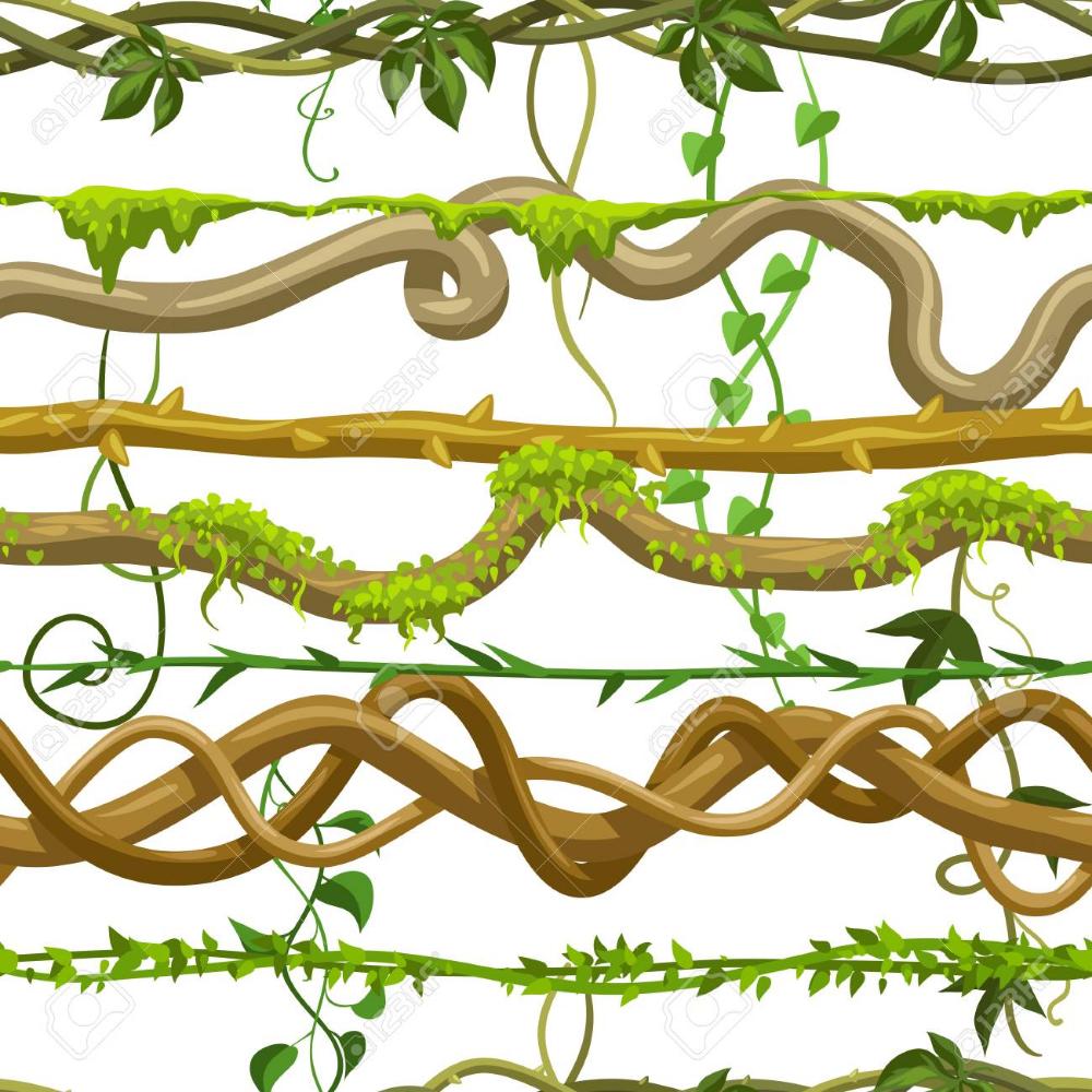 Twisted Wild Lianas Seamless Pattern Jungle Vines Plants Woody Vine Drawing Jungle Drawing Vines
