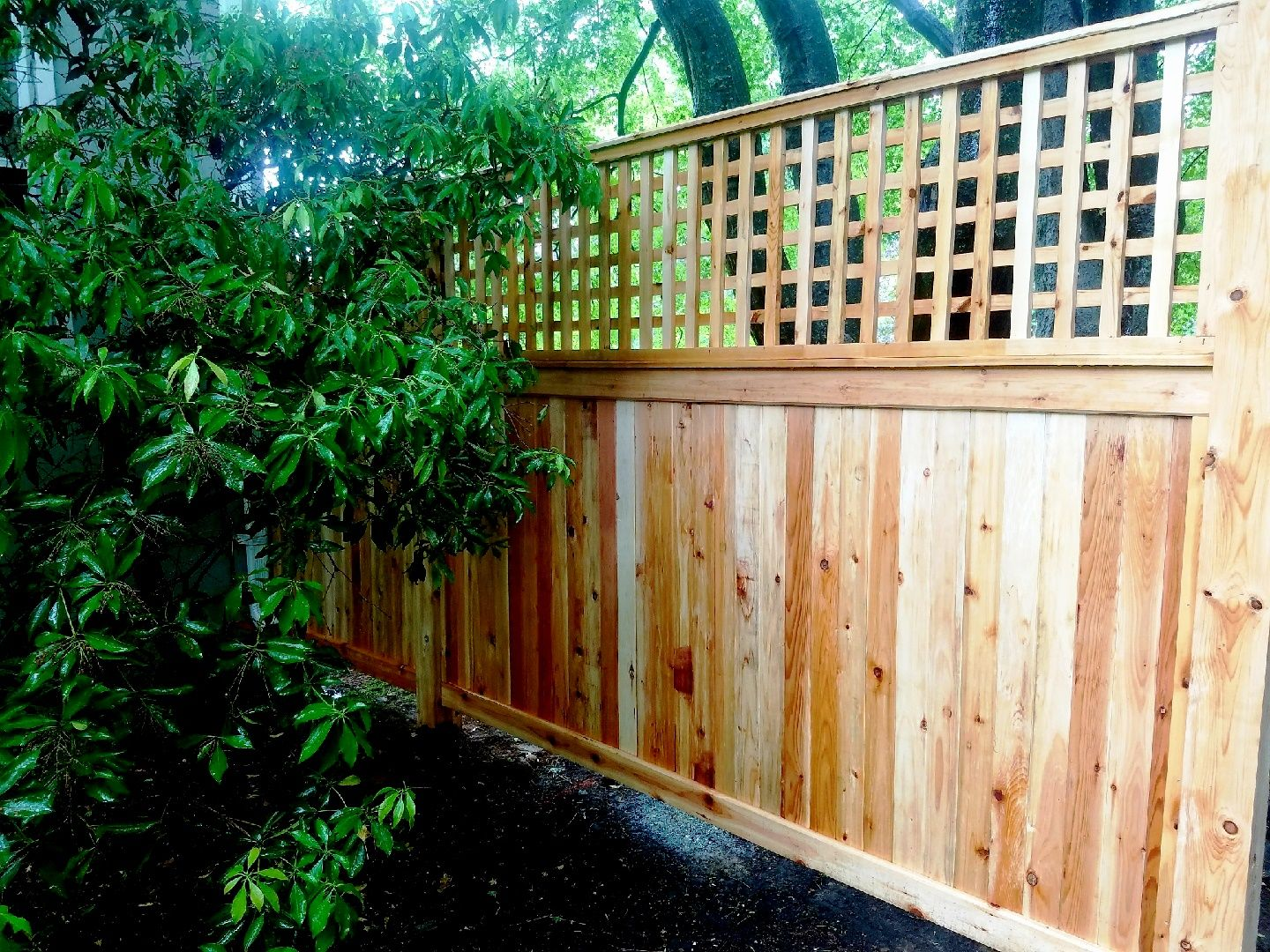 Wood Privacy Fence With 2 Foot Lattice Topper Fence