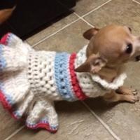 Crocheting : Puffa Love Dog Dress