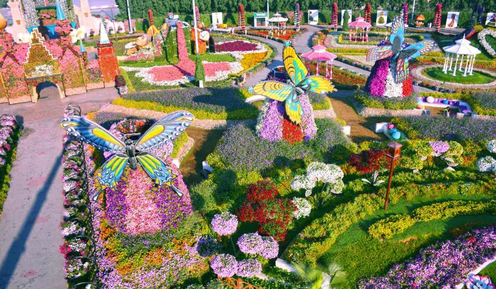A Visitor's Guide To Miracle Garden Dubai Dubai garden