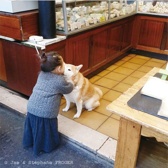 パリの柴犬とちいさなパリジェンヌのしあわせな毎日 写真特集 朝日新聞デジタル w 柴犬 犬のおもしろ写真 柴犬 おもしろ