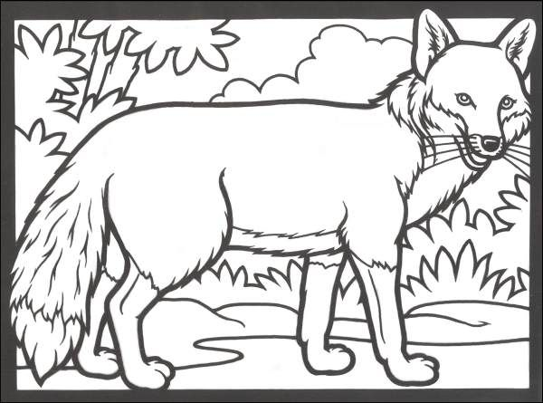 Woodland Animals Stained Glass Coloring Book 014608 Details Fox Coloring Page Horse Coloring Pages Animal Coloring Pages