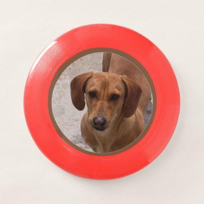 Dachshund Wham O Frisbee Zazzle Com Itchy Dog Dachshund Dachshund Dog