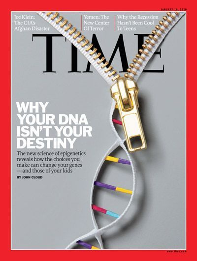 Why Your DNA Isnu0027t Your Destiny Genetics, Ap biology and Teaching - new blueprint gene expression