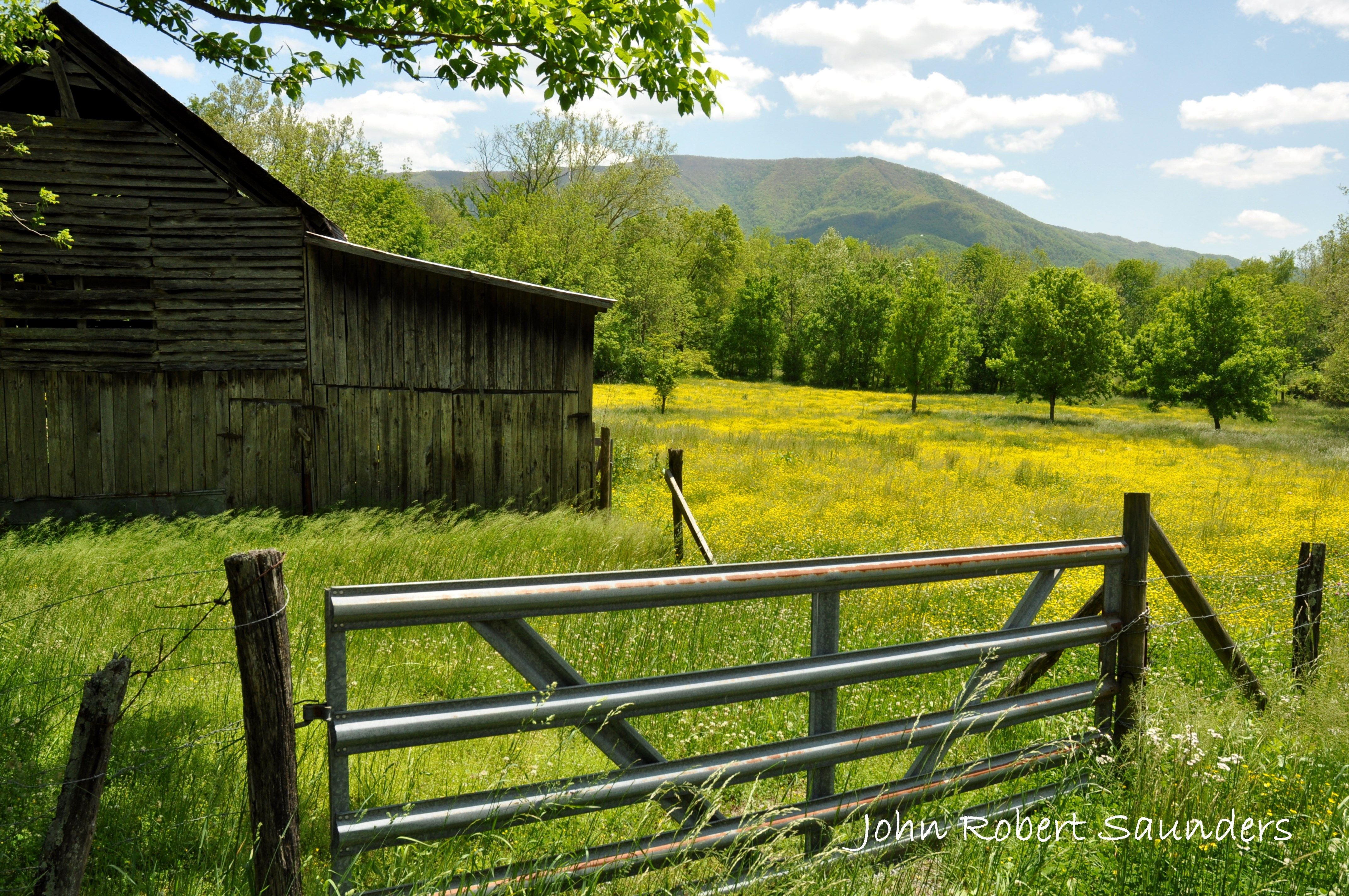 You Will Also Find That The Just Far Enough Away From The Main Parkway But Close E Chattanooga Attractions Travel Outdoors Great Smoky Mountains National Park