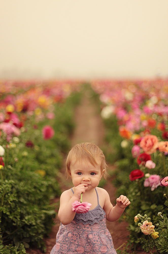 Girl In A Field Of Flowers So Pretty Cute Kids Animals Baby