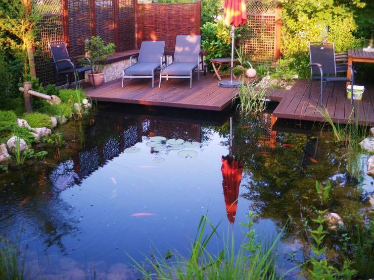 Grüne Oase In wenigen Schritten zum eigenen Teich Pond, Garten