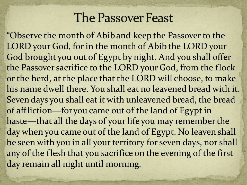 Passover instructions from YHVH | Jewish Festivals & More