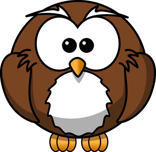 Free Image on Pixabay - Owl, Bird, Brown, White, Cute, Baby ...