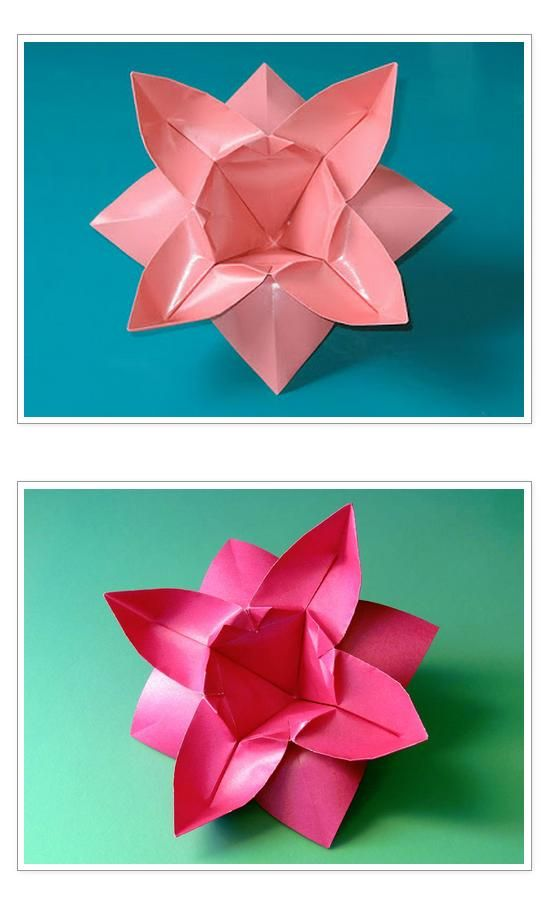 Origami: Fiore ad otto petali - Flower with eight petals, by Francesco Guarnieri, link to the diagrams: http://guarnieri-origami.blogspot.it/2013/01/fiore-ad-otto-petali.html