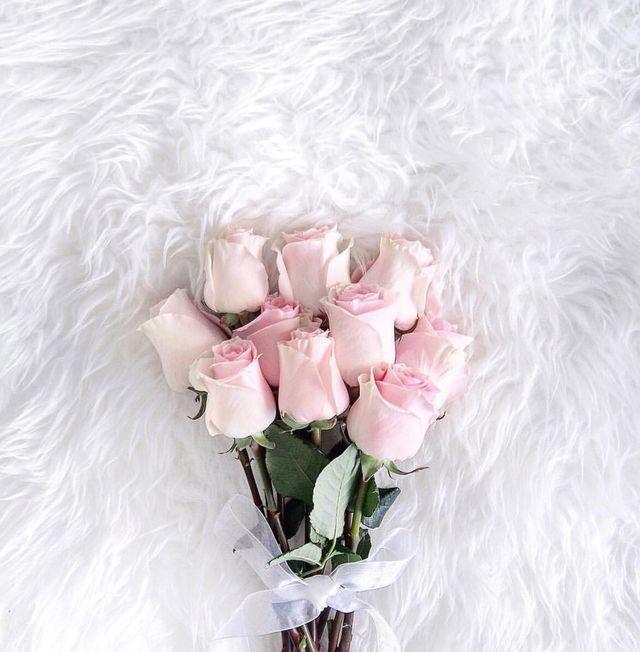 Nezhnye Rozy Cvety Rozovyj Dekor