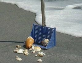 seashell scoop seashell sifter seashell collecting tool sifter scoop seashell collecting tool
